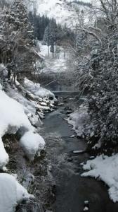 雪 かじか橋